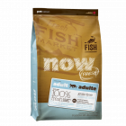 NOW Fresh Grain Free Fish Adult Cat