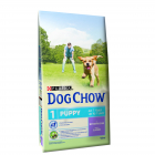 Dog Chow Pappy