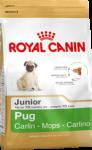 Pug Junior (Мопс)